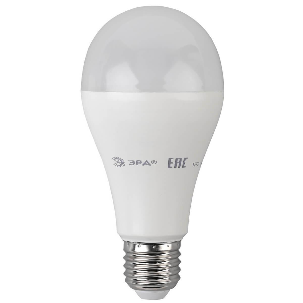 Лампа светодиодная ЭРА E27 20W 4000K матовая ECO LED A65-20W-840-E27
