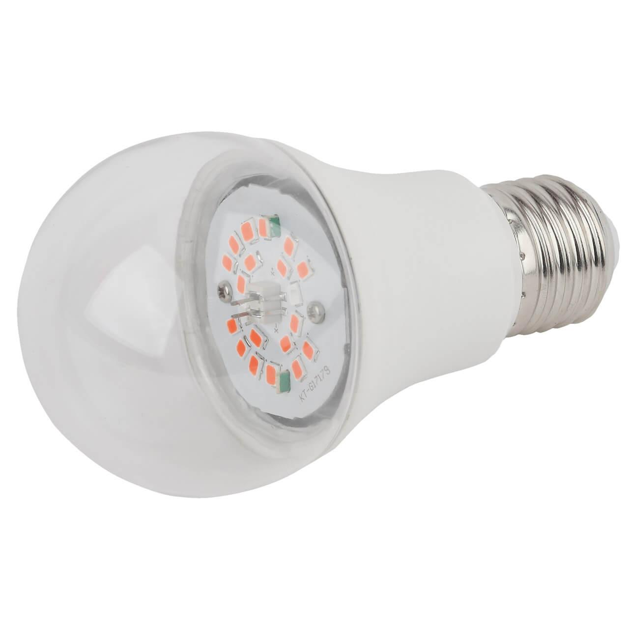Лампочка ЭРА FITO-12W-RB-E27-K недорого