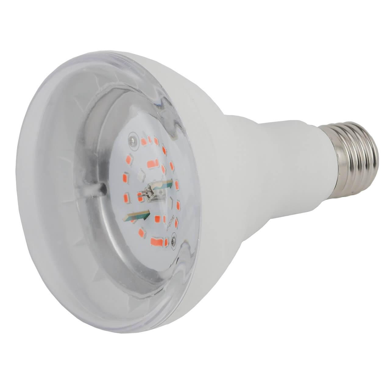 Лампочка ЭРА FITO-16W-RB-E27-K недорого