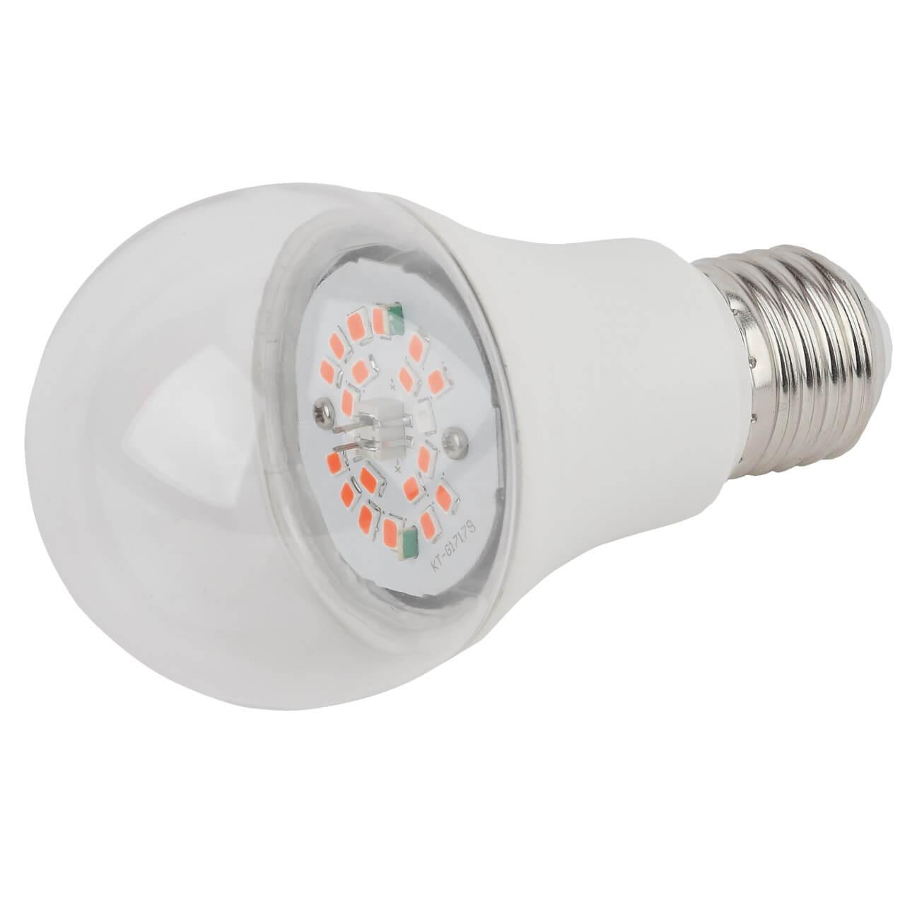 Лампочка ЭРА FITO-14W-RB-E27-K недорого
