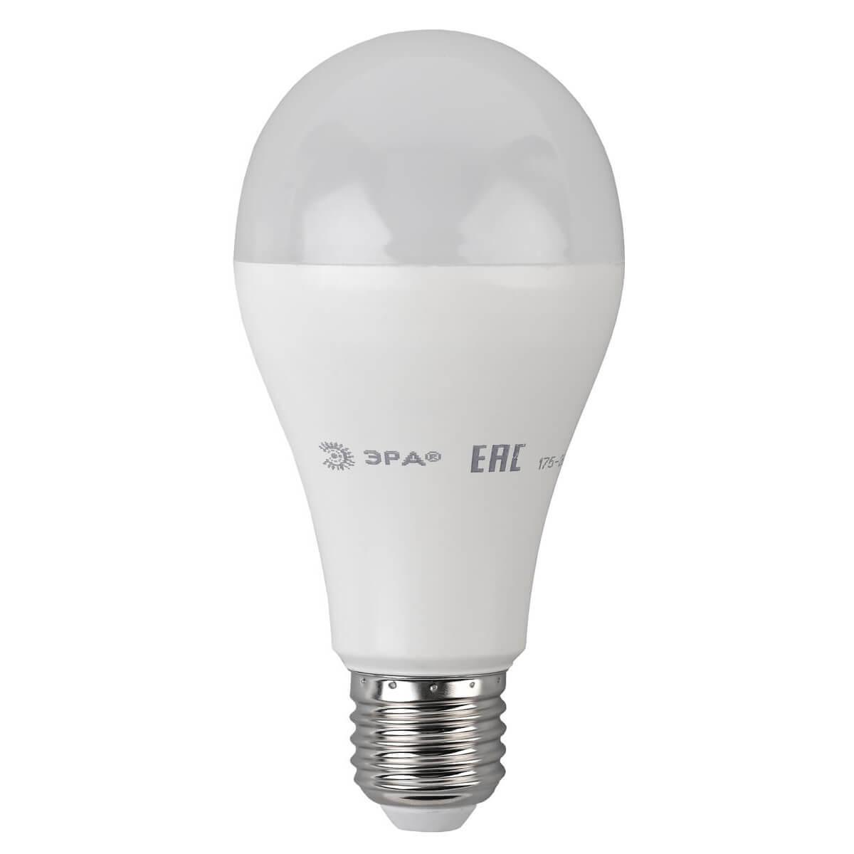 Лампа светодиодная ЭРА E27 20W 2700K матовая ECO LED A65-20W-827-E27