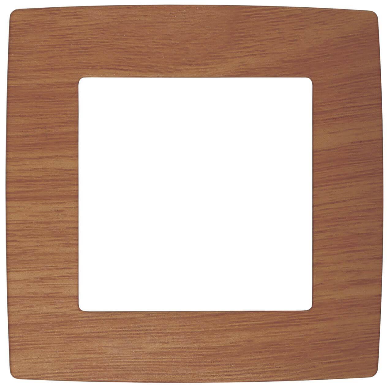 Рамка 1-постовая ЭРА 12 12-5001-09