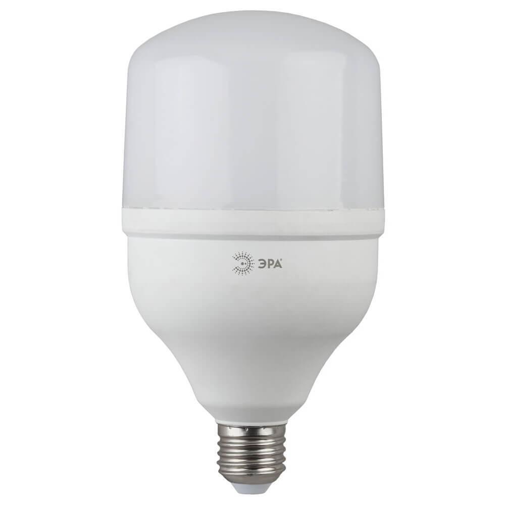 Лампа светодиодная ЭРА E27 20W 6500K матовая LED POWER T80-20W-6500-E27