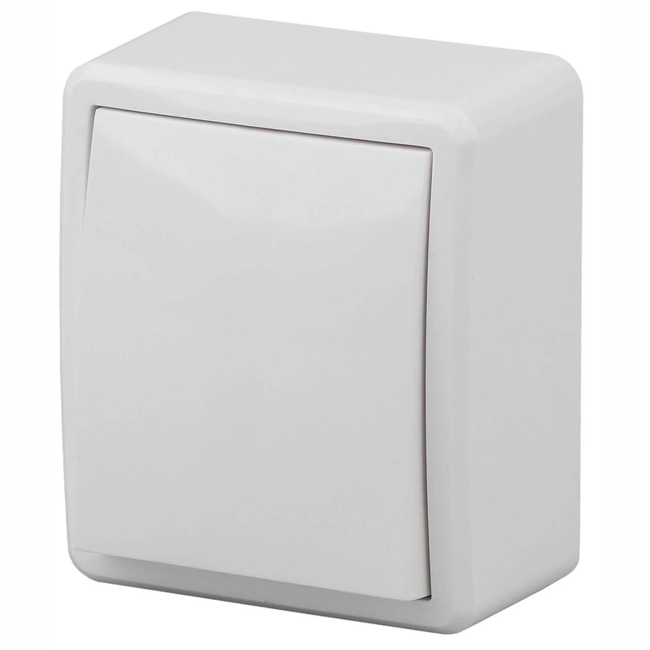 Выключатель одноклавишный ЭРА Эксперт 10AX 250V 11-1201-01