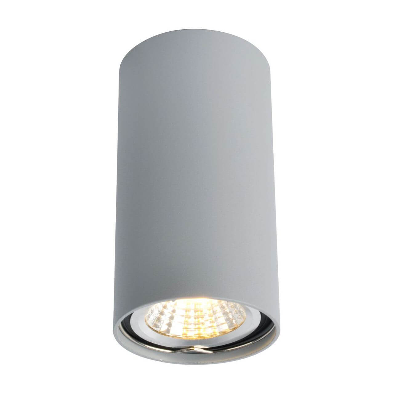 Светильник Arte Lamp A1516PL-1GY 1516