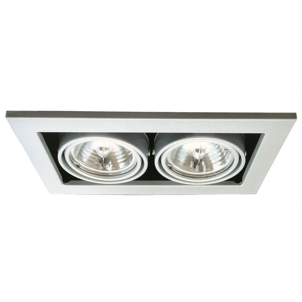 Светильник Arte Lamp A5930PL-2SI Technika