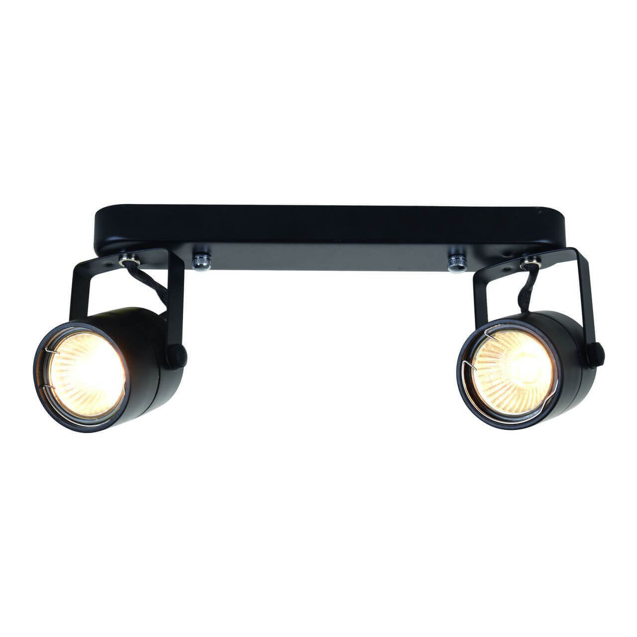 Спот Arte Lamp A1310PL-2BK Lente Black недорого