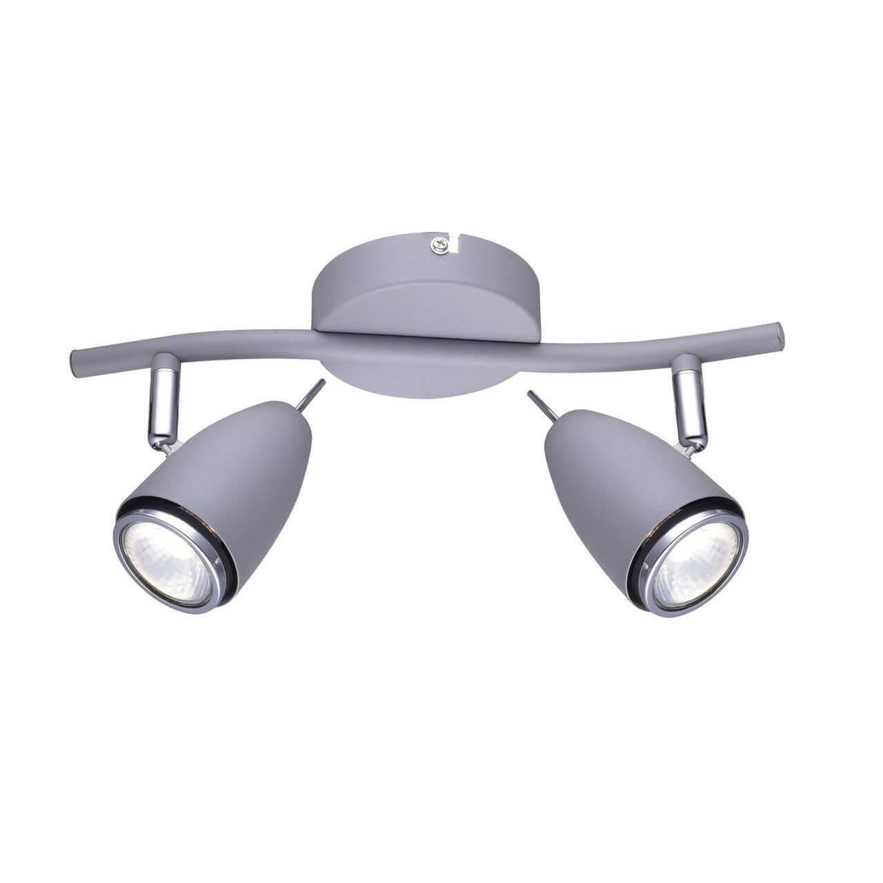 Спот Arte Lamp A1966AP-2GY Regista
