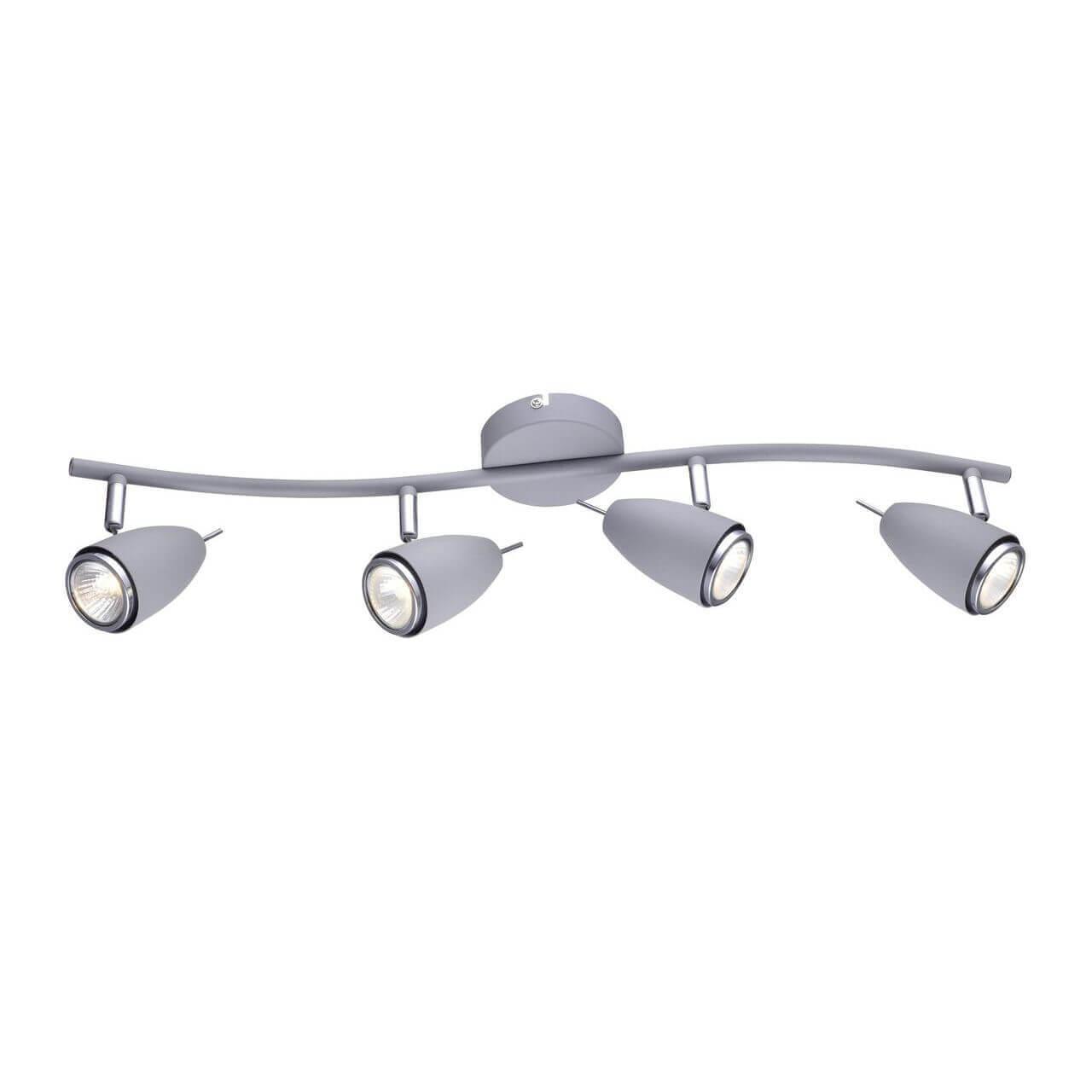Спот Arte Lamp A1966PL-4GY Regista