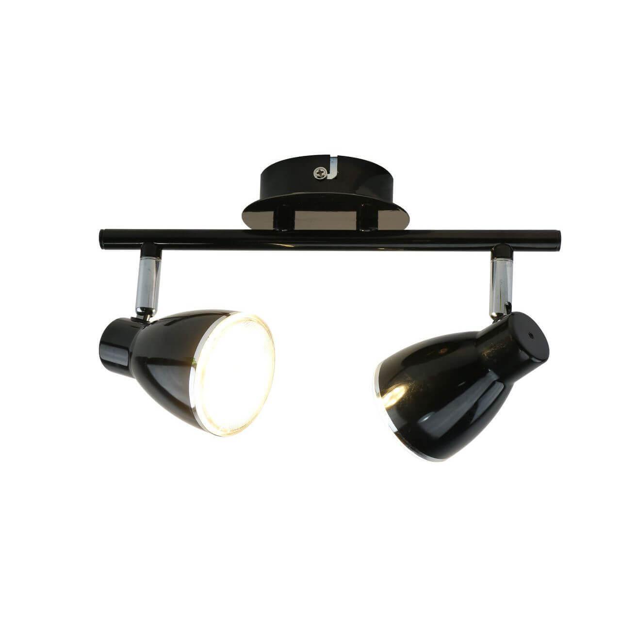 цена на Спот Arte Lamp A6008PL-2BK Gioved Black