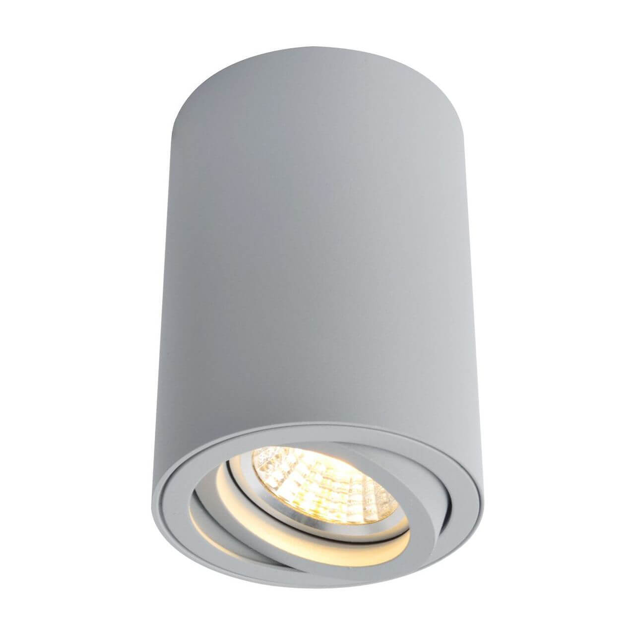 Светильник Arte Lamp A1560PL-1GY 1560