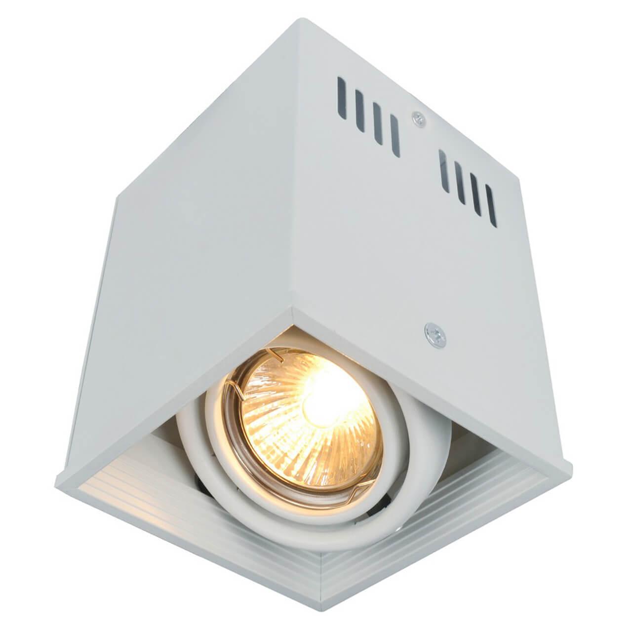 Светильник Arte Lamp A5942PL-1WH Cardani White потолочный светильник arte lamp cardani black арт a5936pl 1bk
