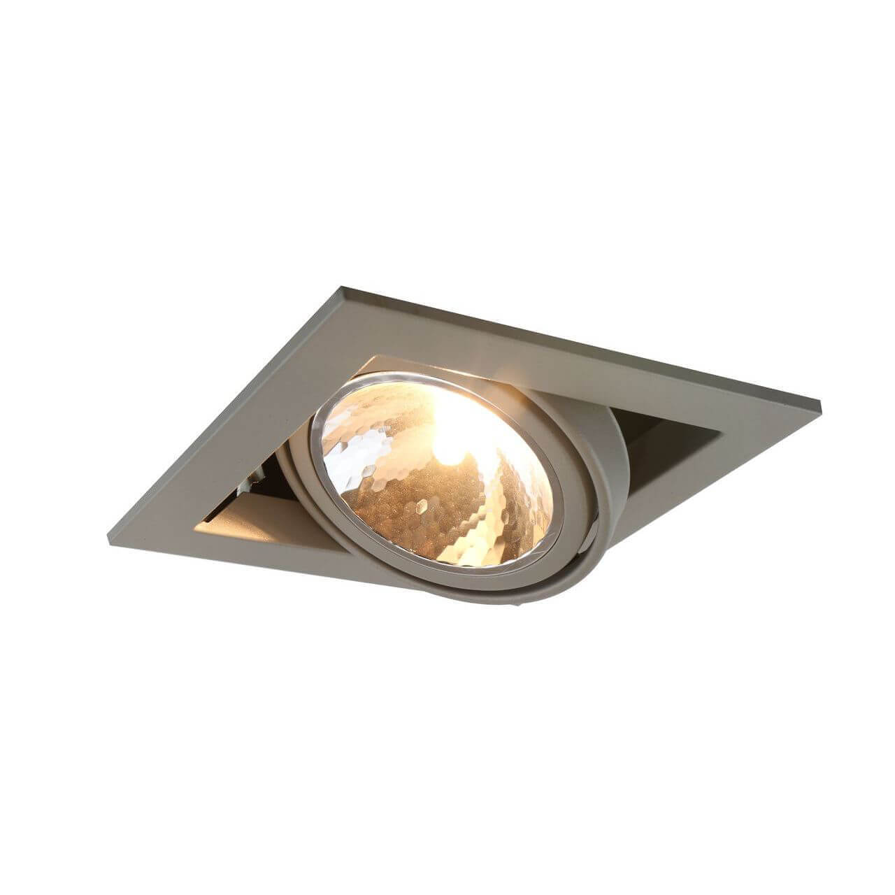 Светильник Arte Lamp A5949PL-1GY Cardani Semplice GY
