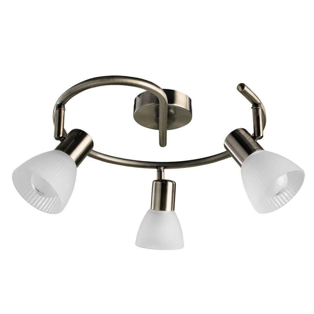Спот Arte Lamp A5062PL-3AB Parry Bronze
