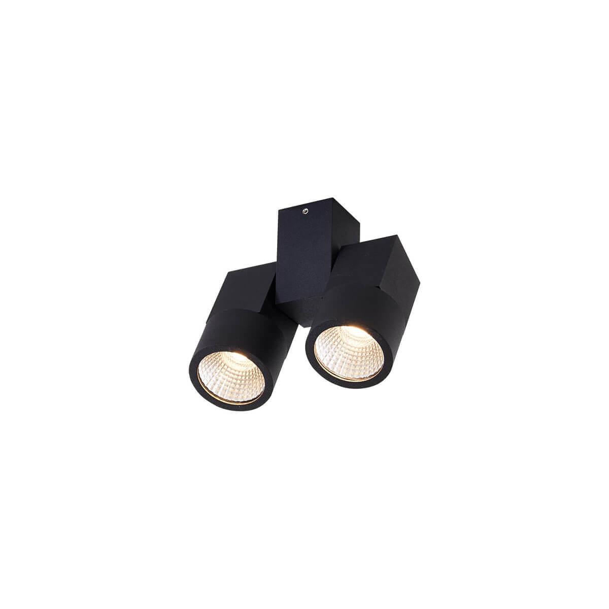 Светильник Citilux CL556102 Дубль потолочный светодиодный светильник citilux дубль cl556102