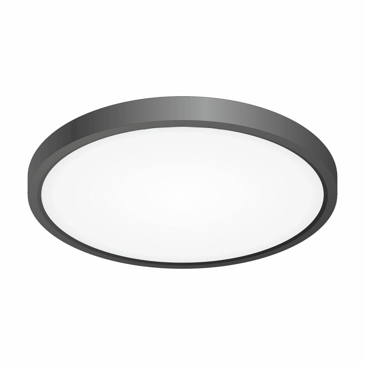 Светильник Citilux CL738241V Бейсик