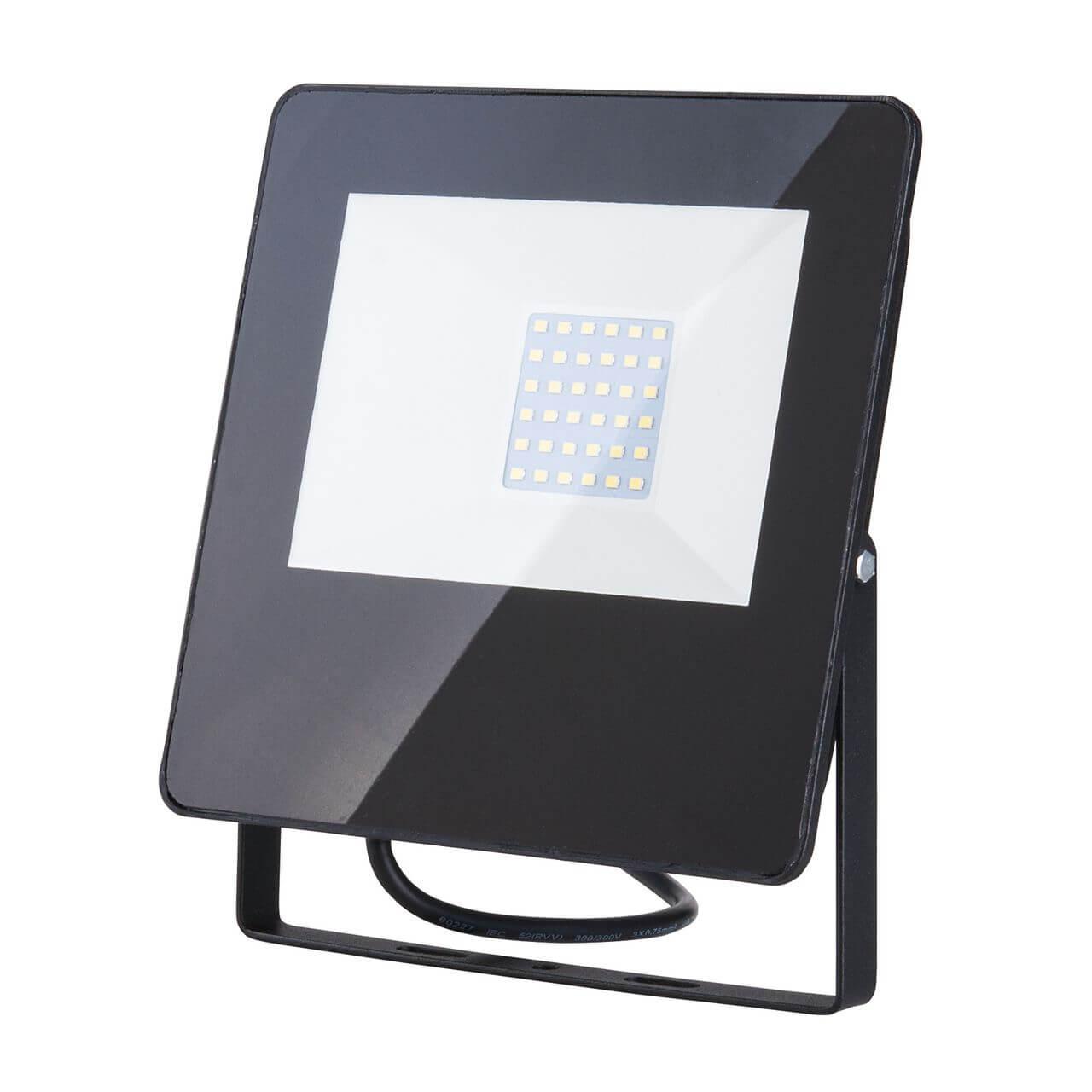 Прожектор Elektrostandard 4690389126826 013 FL LED