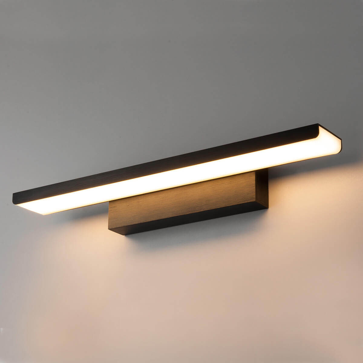 Подсветка для картин Elektrostandard Sankara LED 16W 1009 IP20 черная 4690389102790 цена и фото