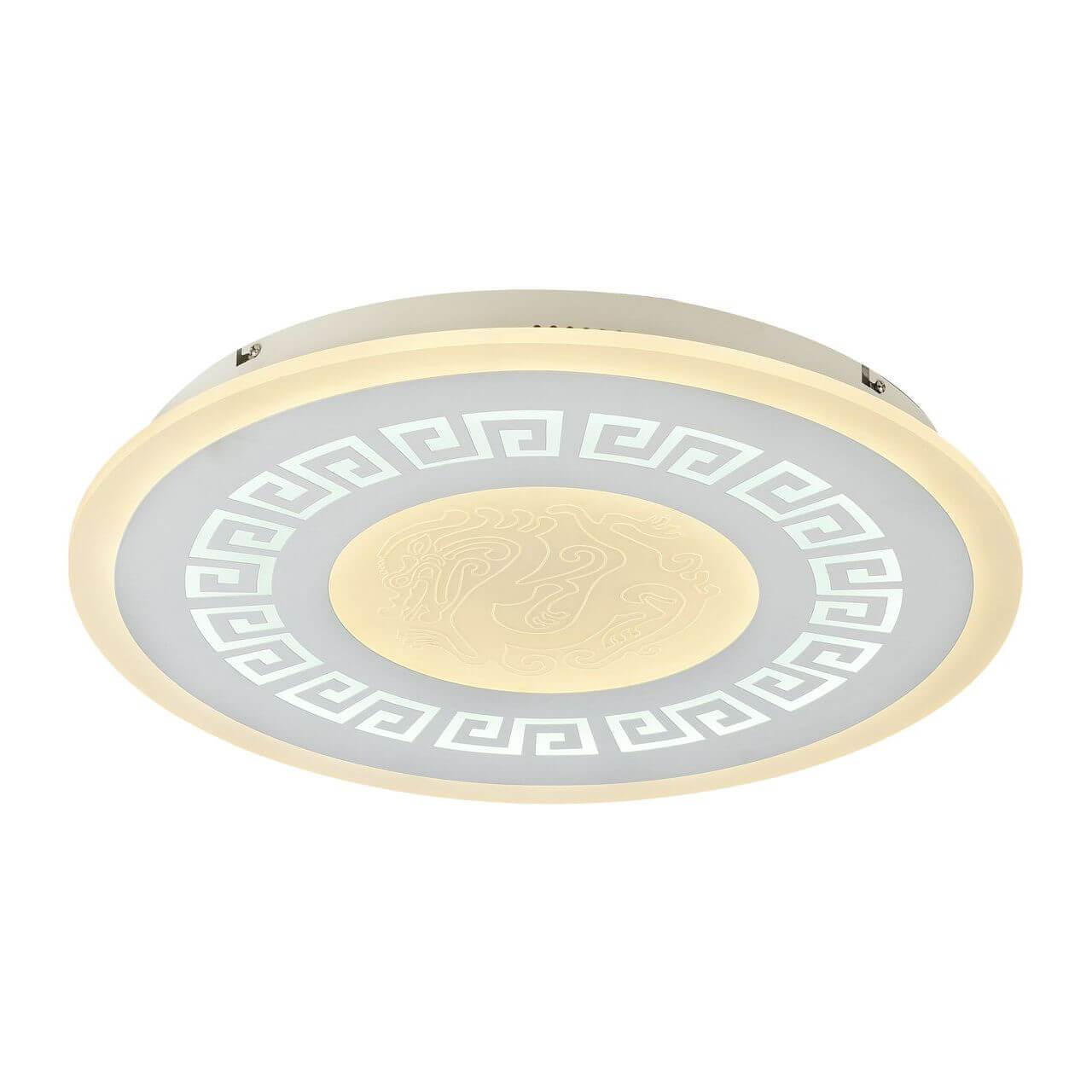 Потолочный светодиодный светильник F-Promo Ledolution 2273-5C