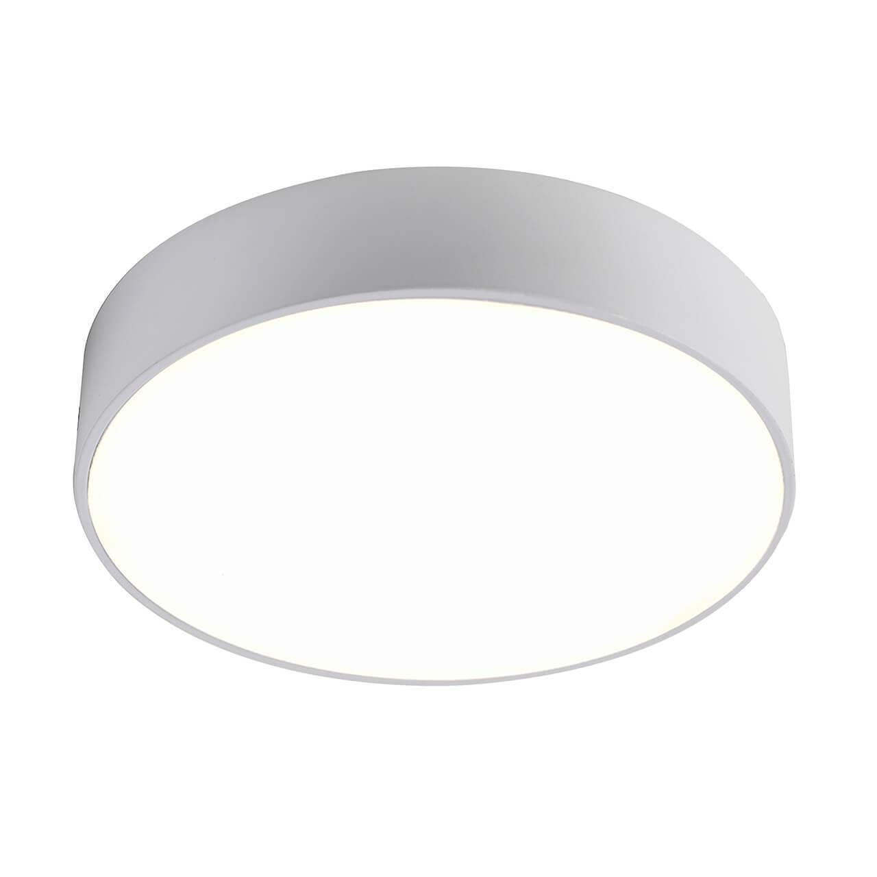 Потолочный светодиодный светильник Favourite Flashled 2065-24C недорого