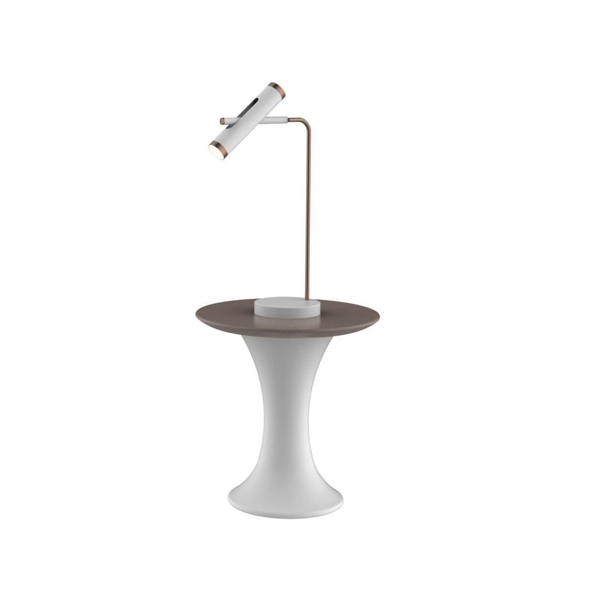 Настольная лампа Favourite 2325-2T Duplex