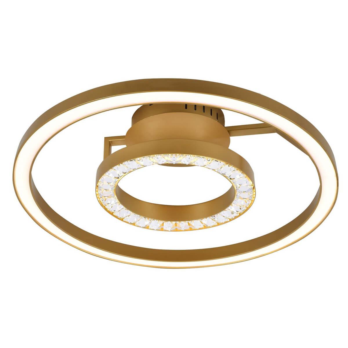 Потолочный светодиодный светильник Favourite Sanori 2546-2U цена и фото