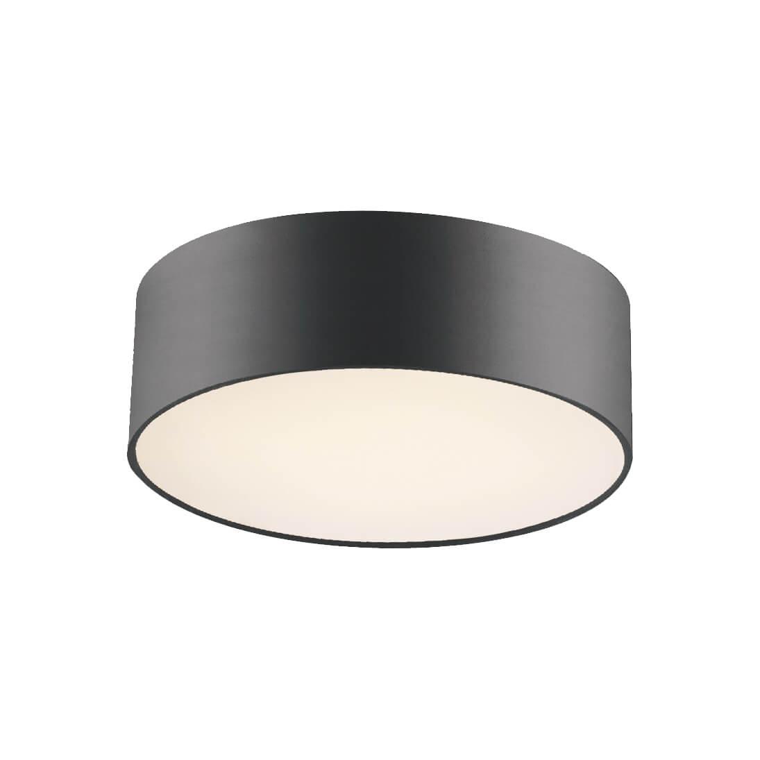 Потолочный светильник Favourite Cerchi 1514-2C1 стоимость