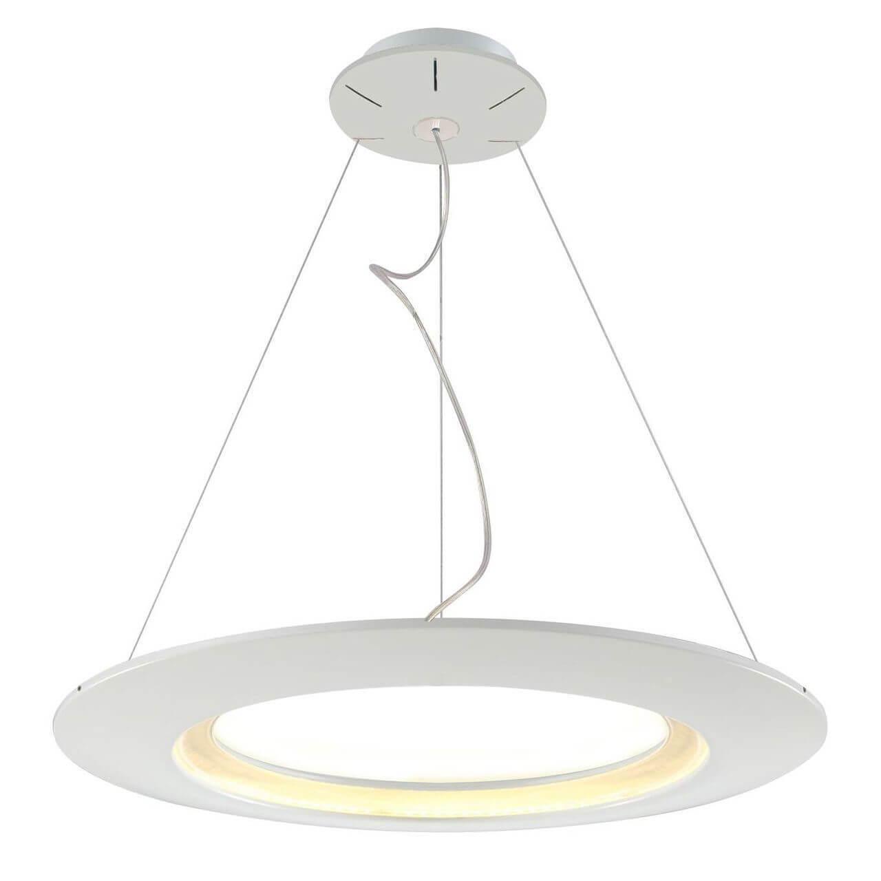 купить Подвесной светодиодный светильник Horoz Concept-41 белый 019-010-0041 по цене 21641 рублей