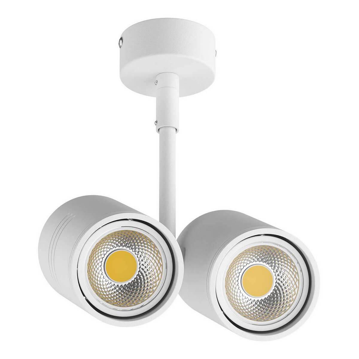 Светильник Lightstar 214446 Rullo