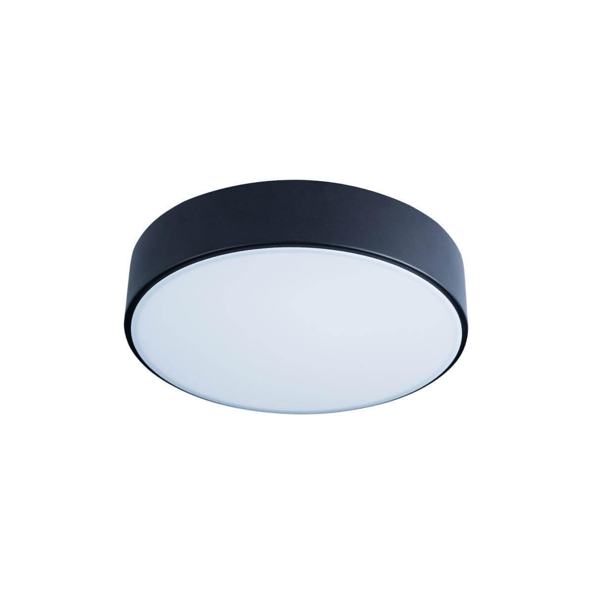 Светильник Loft IT 10002/12 Black Axel