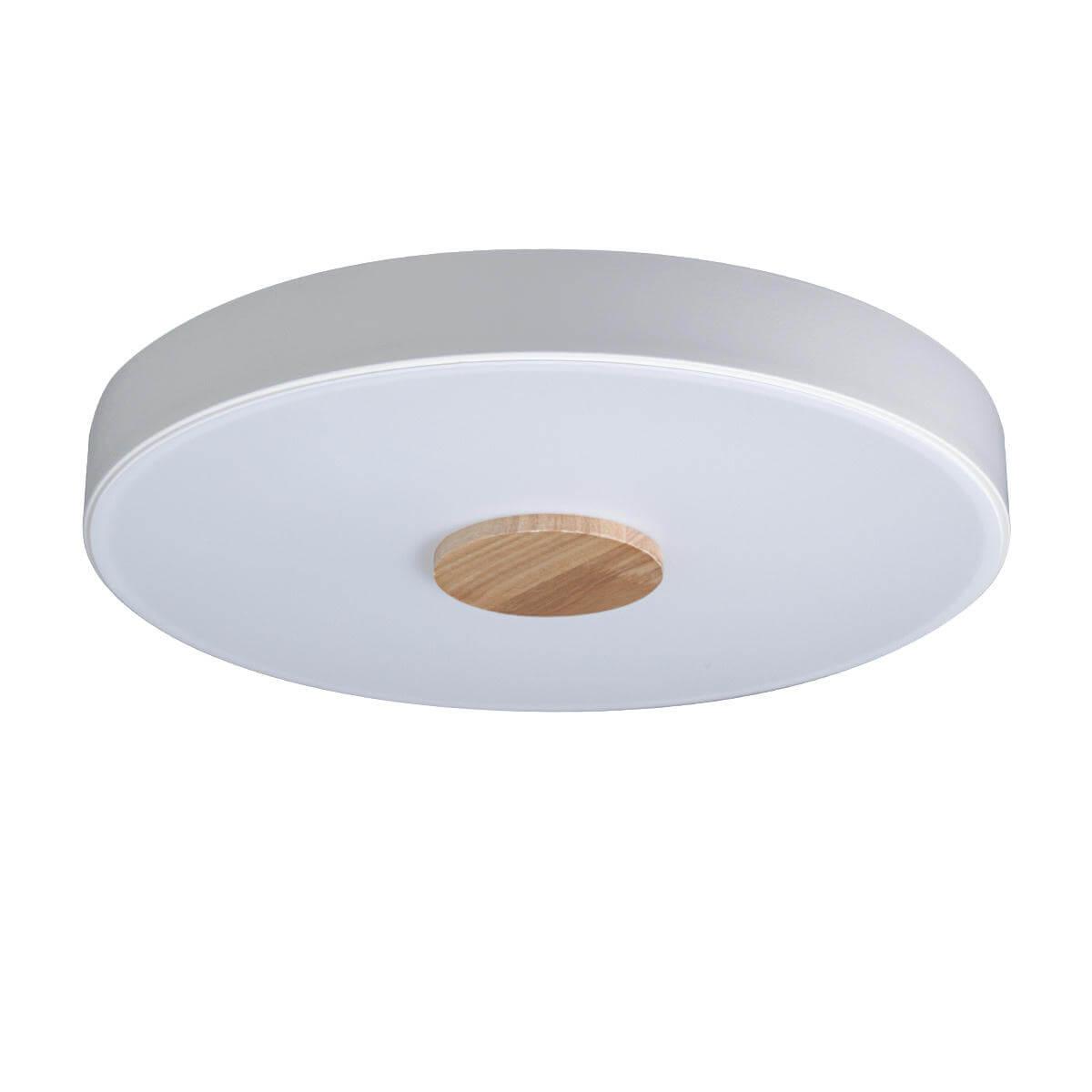 Светильник Loft IT 10003/24 White Axel