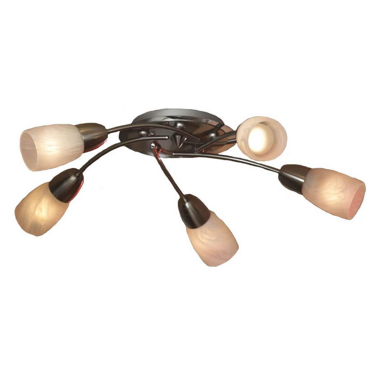 лучшая цена Потолочная люстра Lussole Cevedale LSQ-6907-05