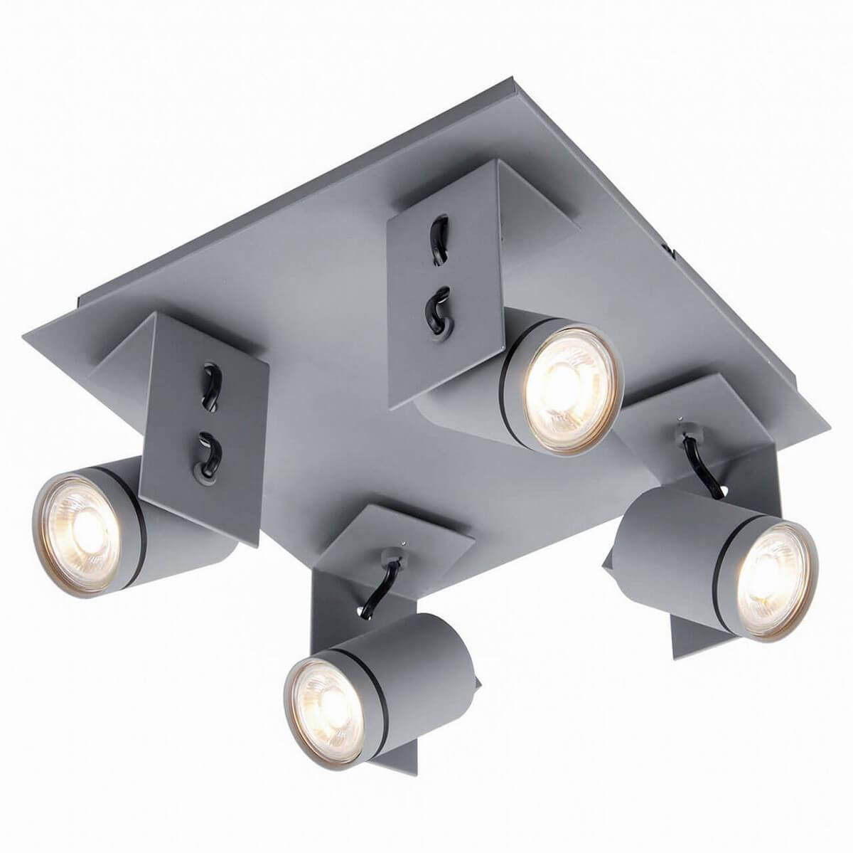 Спот Lussole Loft LSP-8024 ideal 8024