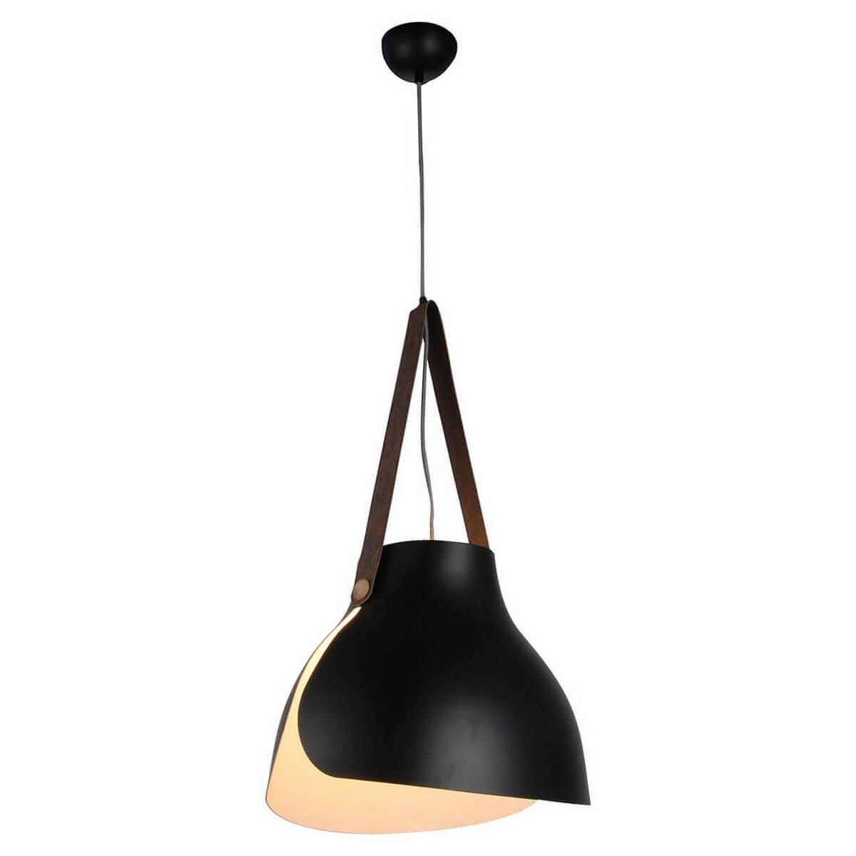 Светильник Lussole LOFT LSP-9842 LSP-984
