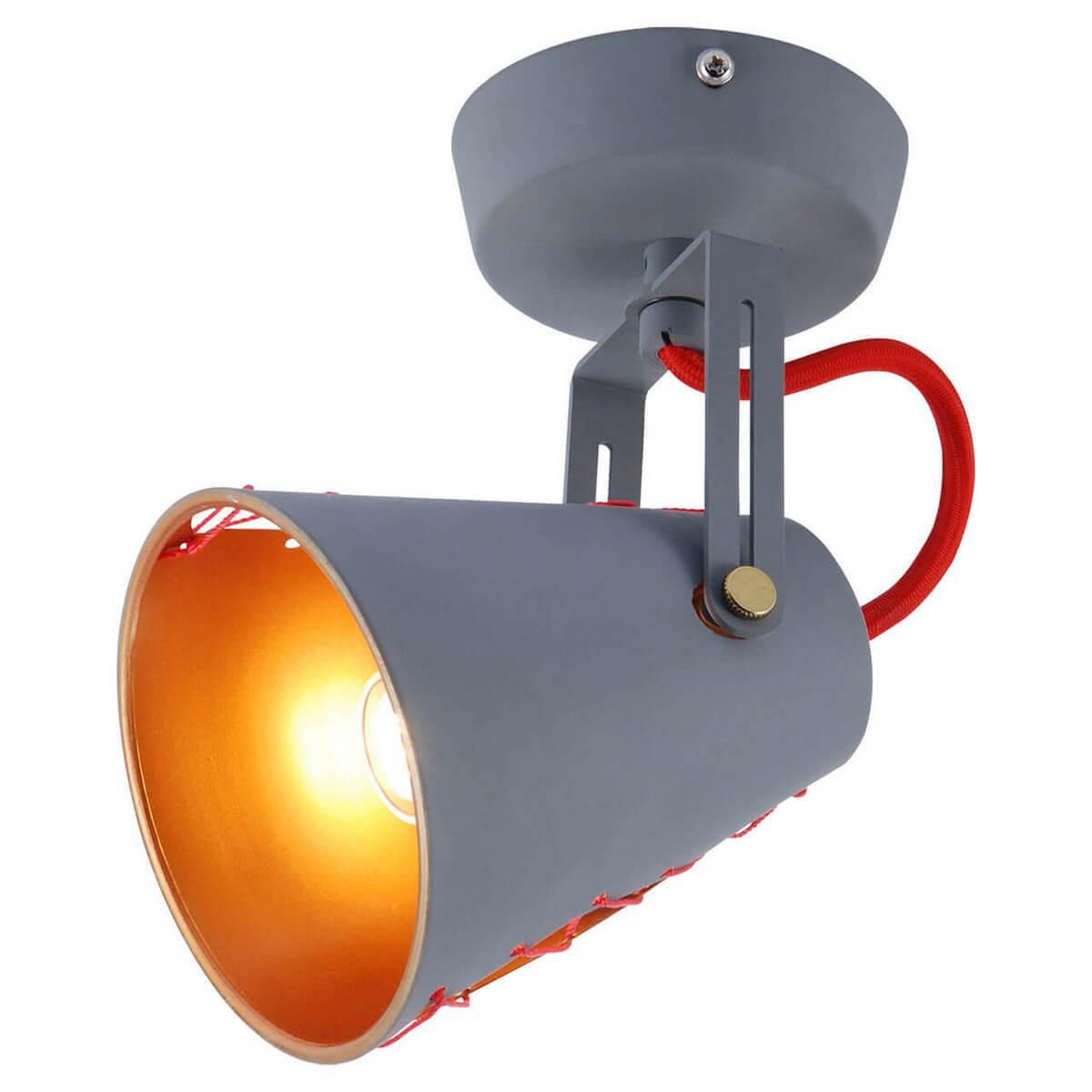 Спот Lussole LOFT LSP-8020 LSP-0518 спот lussole loft lsp 8020 lsp 0518