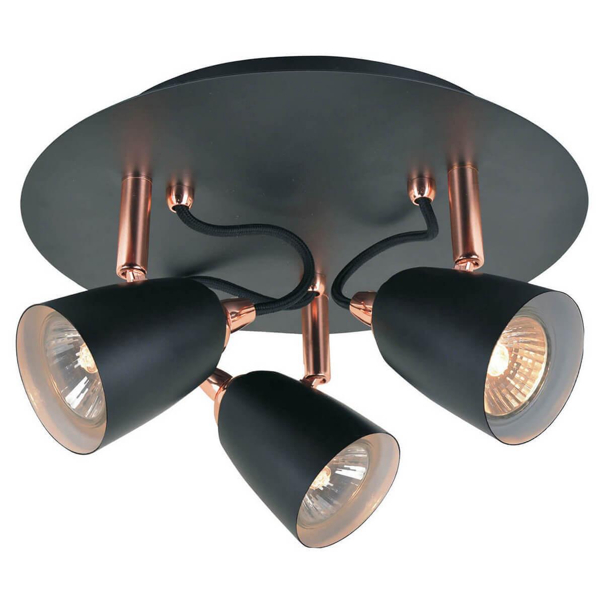 лучшая цена Спот Lussole Loft LSP-9853