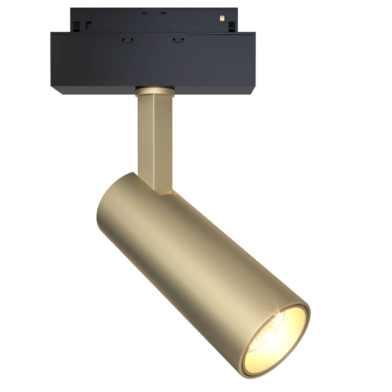 Светильник Maytoni TR019-2-10W3K-MG Track lamps
