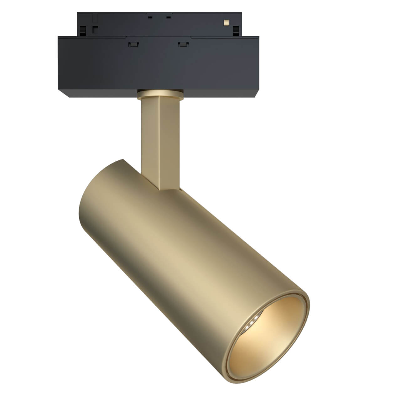 Светильник Maytoni TR019-2-15W3K-MG Track lamps