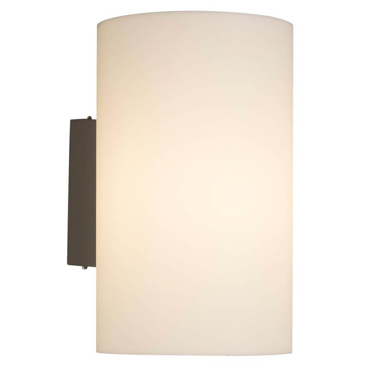 цены Уличный настенный светильник Maytoni Camden O008WL-01S