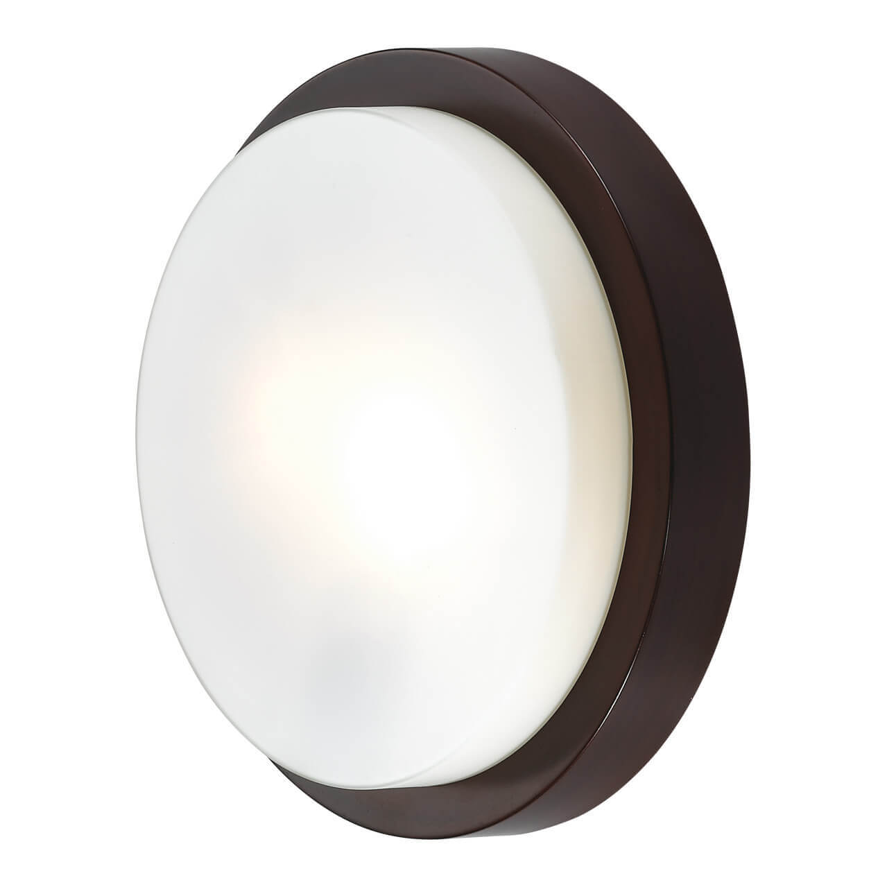 Светильник Odeon Light 2744/2C Holger