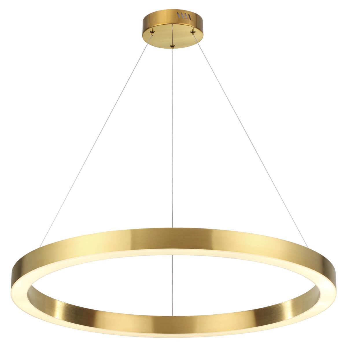 Светильник Odeon Light 3885/45LG L-vision