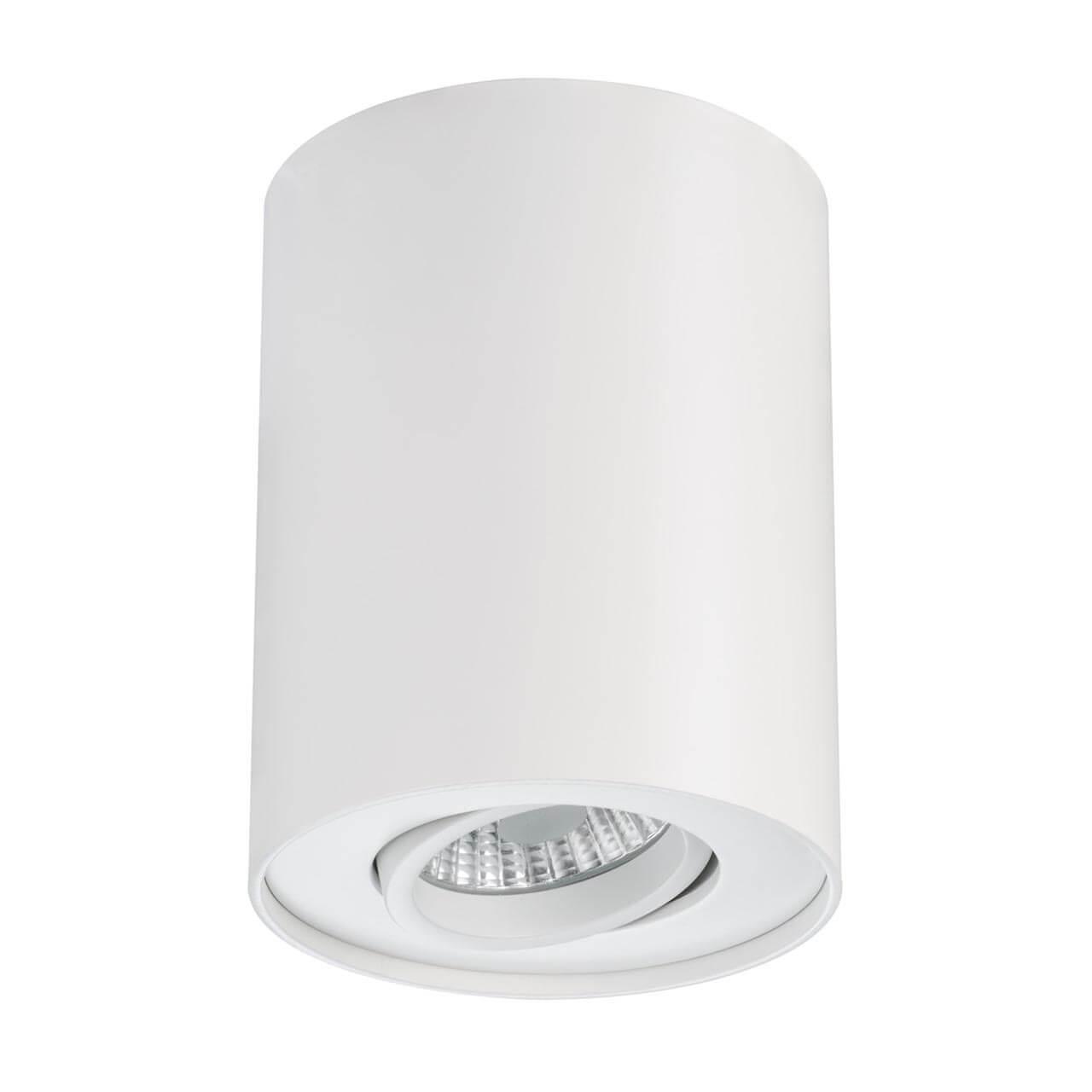 все цены на Потолочный светодиодный светильник Paulmann Premium Line 92690 онлайн