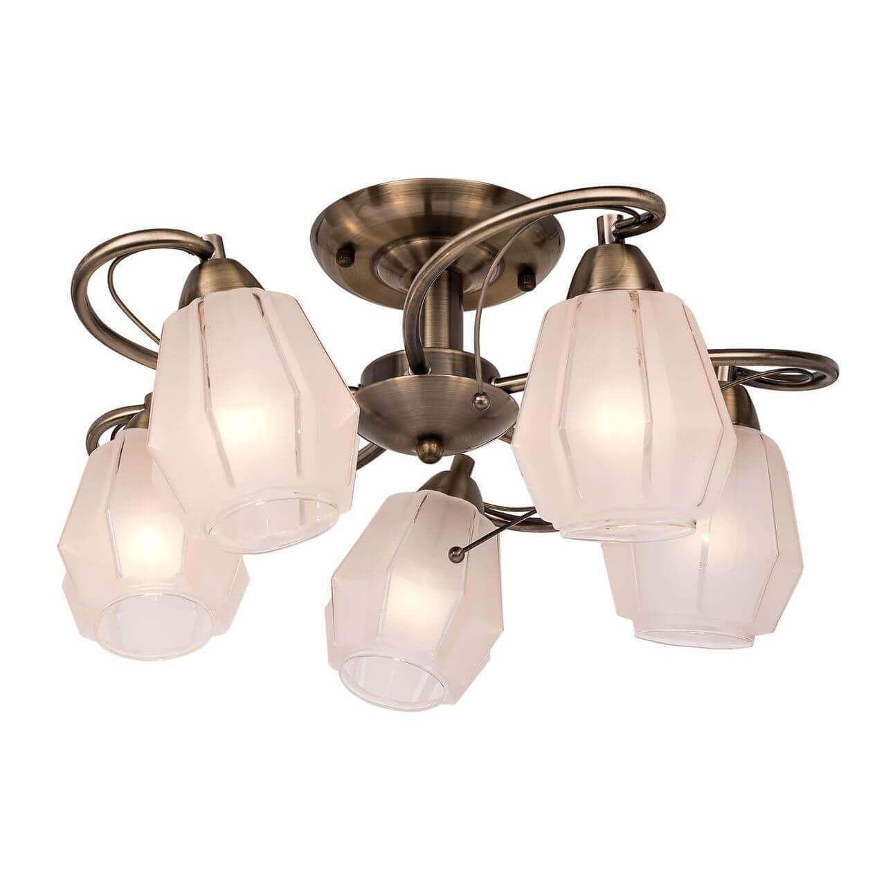 Люстра Silver Light 506.53.5 Brazil